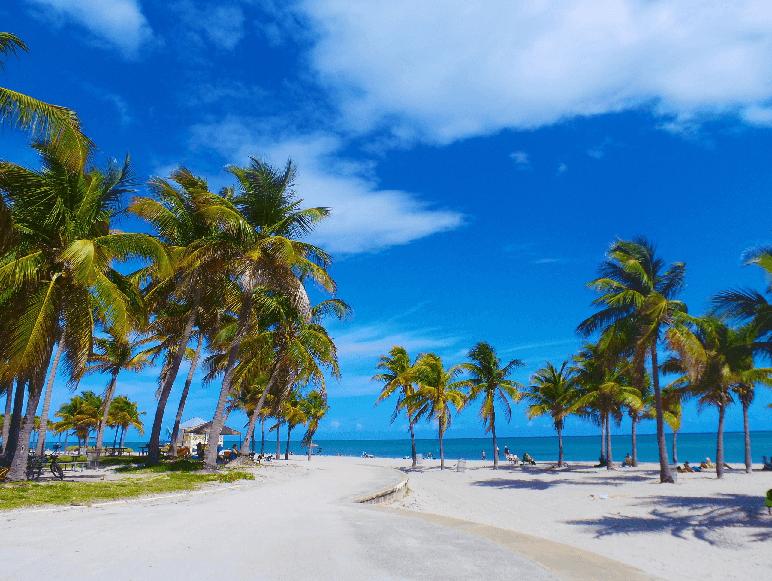 Praia Hobie Beach e Crandon Park em Key Biscayne