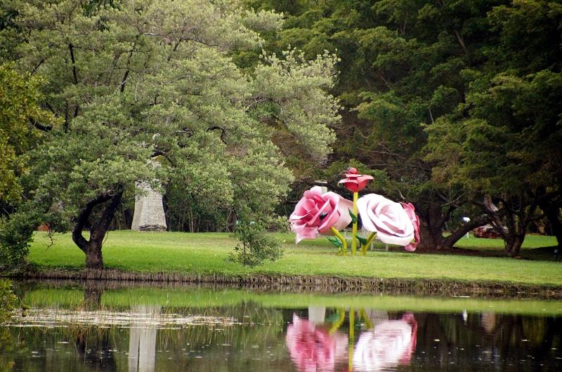 Fairchild Tropical Garden em uma viagem romântica em Miami